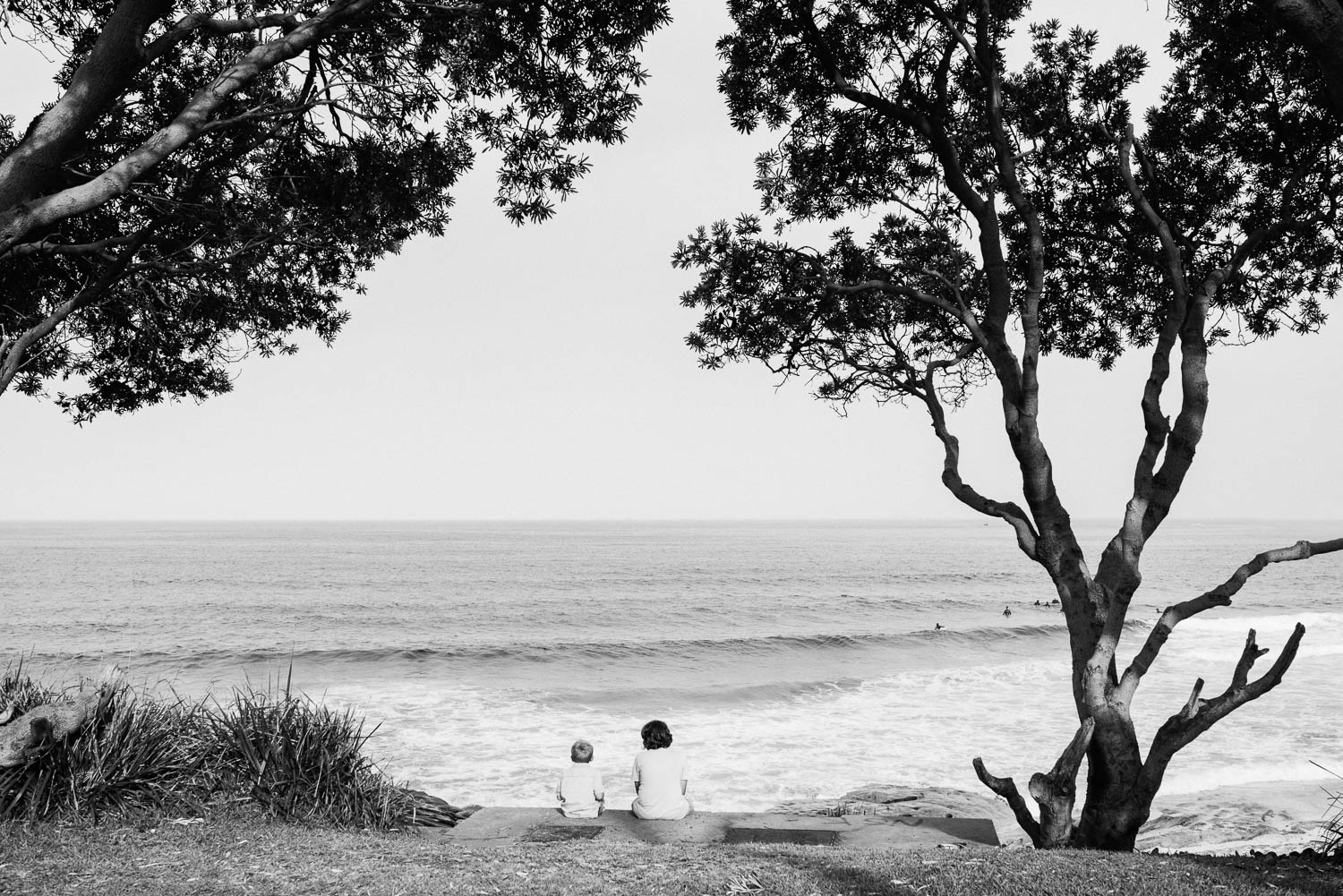 black and white image of two young brothers with back to camera sitting on grass under trees watching surfers in ocean in the distance in the Sutherland Shire Sydney